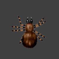 Dungeoneers Academy - Monster Folio: Blood Spider